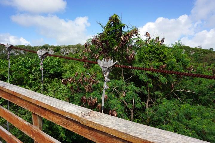Hoyo Azul Dominicaanse Republiek scape park hangbrug