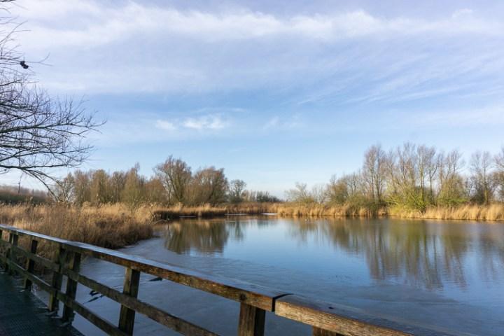 Water bij Oostvaardersplassen in Nationaal Park Nieuw Land, Flevoland.