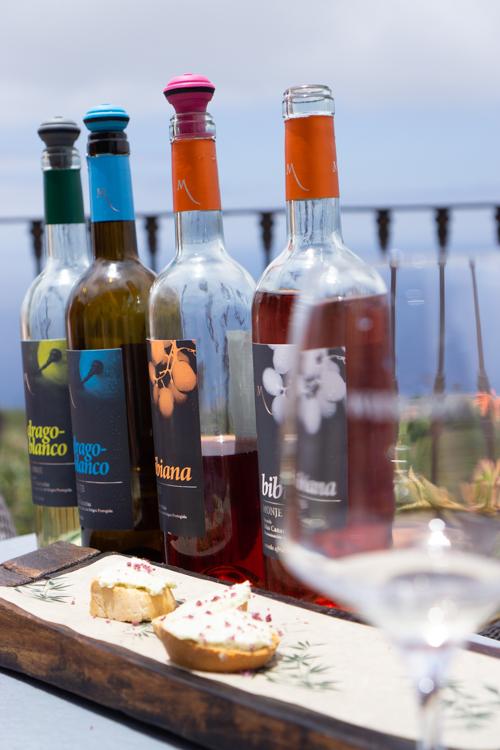 Wijnproeverij Tenerife