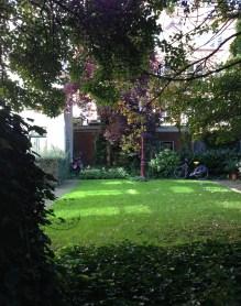 courtyard trees amsterdam