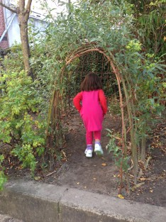 willow tunnel