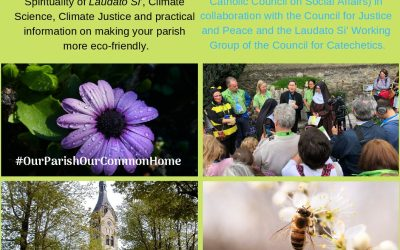 'Our Parish, Our Common Home' – Laudato Si' Day 12 April 2019