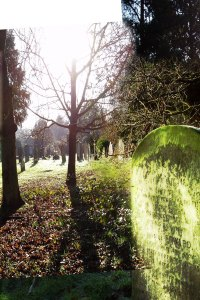 graves-merged2
