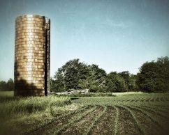 Old Silo, Field 8 X 10