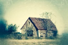 Barn in the Overgrowth 8 X 12