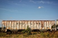 Boxcar, Early Autumn 8 X 12