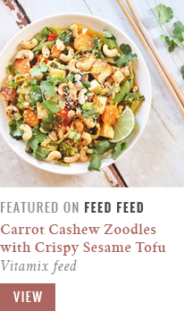 justine-celina_carrot-cashew-zoodles_vitamix-feed_feed-feed-feature