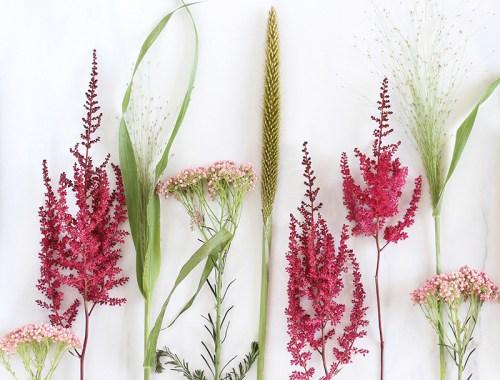 Digital Blooms October 2016 // JustineCelina.com x Rebecca Dawn Design