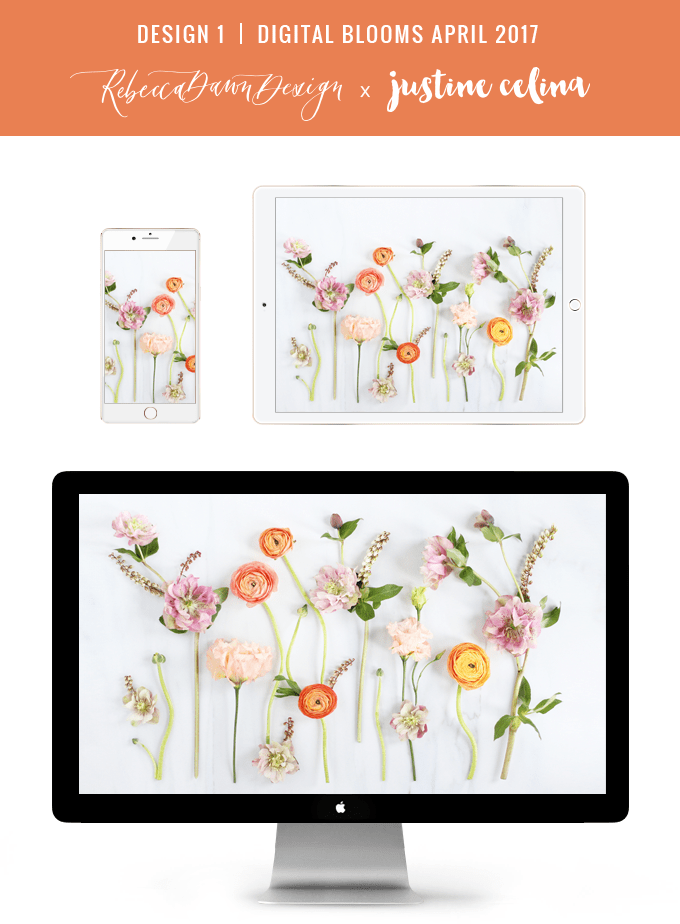 Digital Blooms April 2017 | Free Desktop Wallpapers + Digital Blooms Turns 1! // JustineCelina.com x Rebecca Dawn Design | Design 1