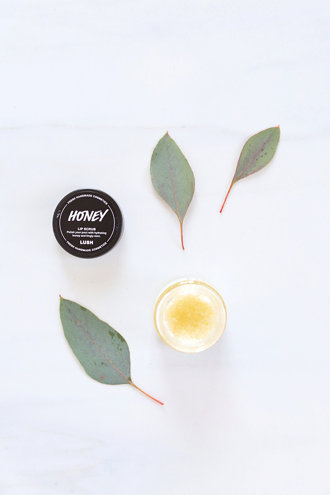 LUSH Honey Lip Scrub Photos, Review   November 2017 Beauty Favourites // JustineCelina.com