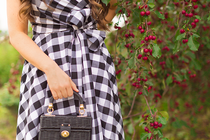 What to Wear to   A Horse Race // Horses in Alberta, Canada   Calgary Fashion & Lifestyle Blogger // JustineCelina.com