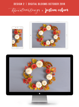 Digital Blooms October 2018   Free Desktop Wallpapers for Fall with Dahlias, Amaranthus, Sedum, Chrysanthemum Poms, Ornamental White Pumpkins and an array of foraged autumn leaves and berries   Pantone Fall / Winter 2018 Free Tech Wallpapers   Design 2 // JustineCelina.com x Rebecca Dawn Design