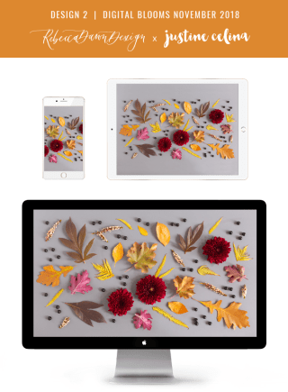 Digital Blooms November 2018 | Free Desktop Wallpapers for Fall with Mums, Thrytptomene and an array of foraged autumn leaves and berries | Pantone Fall / Winter 2018 Free Tech Wallpapers | Design 2 // JustineCelina.com x Rebecca Dawn Design