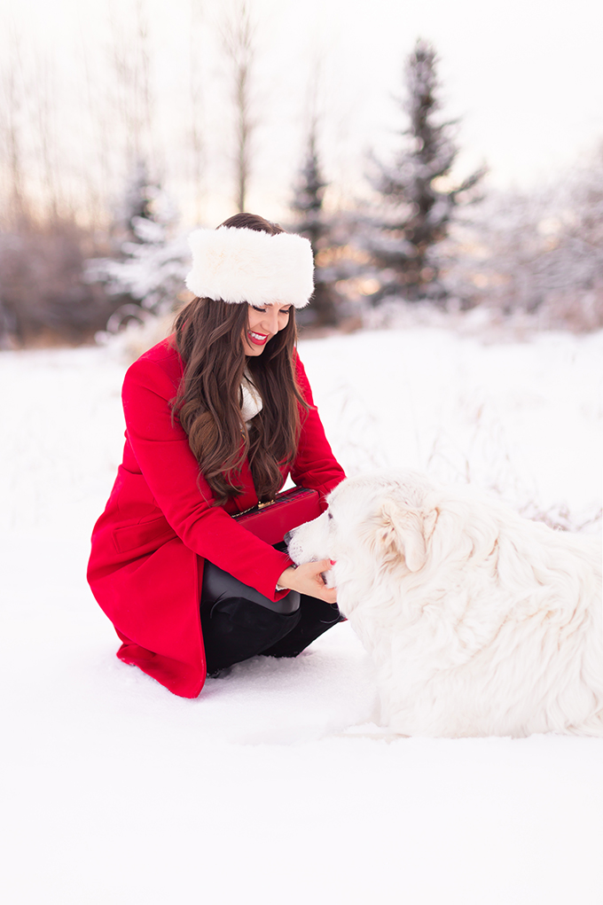 2018 Rewind + 2019 Goals | Calgary Lifestyle Blogger | Holiday Outfit | Girl with a Great Pyrenees in the winter snow // JustineCelina.com