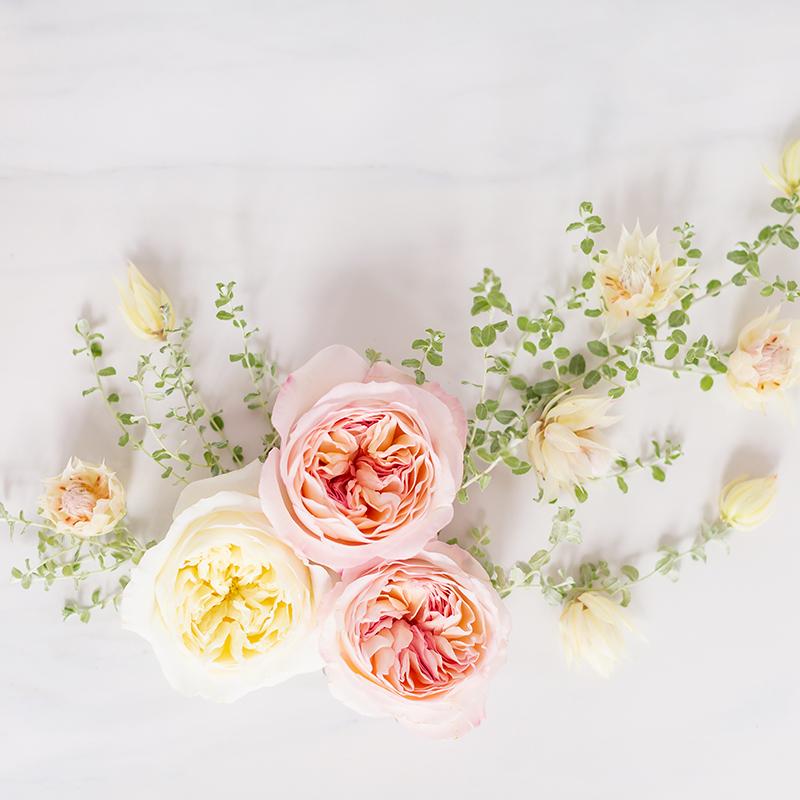 Digital Blooms May 2019 Free Desktop Wallpaper