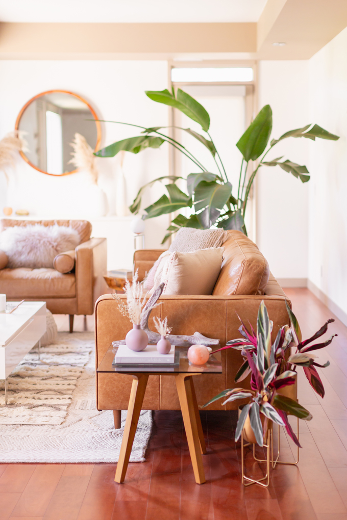 MidSummer Space Refresh Update | A Bohemian, Mid-Century Modern Living Room featuring Pampas Grass and a Mature Bird of Paradise Plant | Summer Decor 2019 Trends | Bohemian, Mid Century Modern Decor | Mature Bird of Paradise Plant | Calgary Lifestyle, Interior Design and Home Decor Blogger // JustineCelina.com