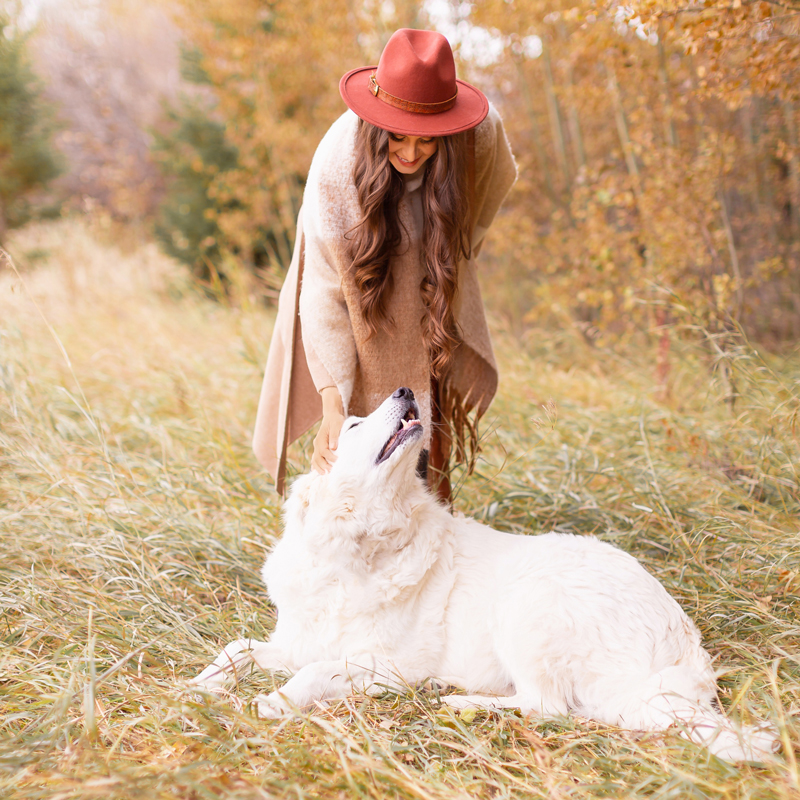 October 2019 Soundtrack | The Best Chill Fall Playlist | The Best Chill Jazzy Playlists | Great Pyrenees | Brunette Woman Wearing a Casual Fall Outfit in Yellow Leaves | Calgary Creative Lifestyle and Creative Lifestyle Blogger // JustineCelina.com