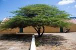 Savonet Plantation