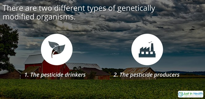 Pesticides Drinkers and Producers