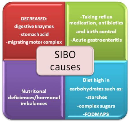 SIBO causes