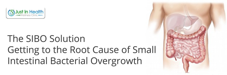 The SIBO Solution Getting To The Root Cause Of Small Intestinal Bacterial Overgrowth