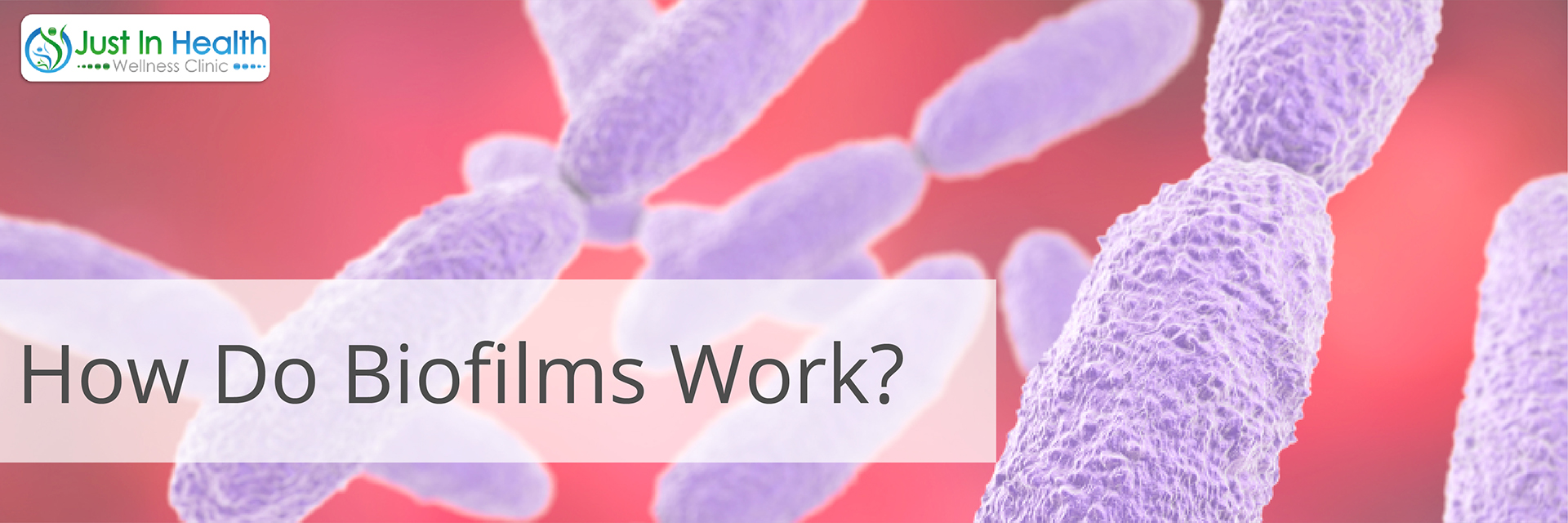 How do biofilms work?