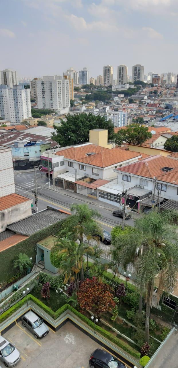 Miguel, Guarulhos, 2020.