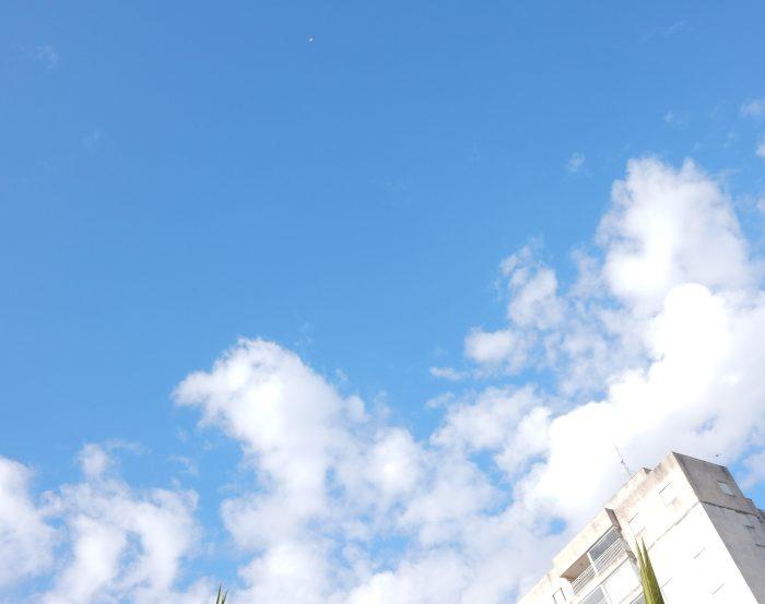 Quinhentos mil cadáveres em céu azul (5 variações) #OVírusSomosNós#OVírusSomosNós