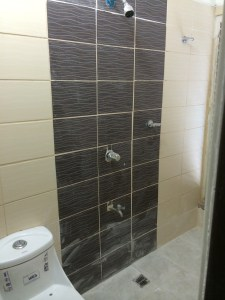 Shower area and toilet