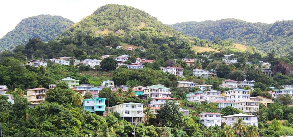 Caribbean Cruise – Whale and Dolphin Watching in Dominica (Day 5)