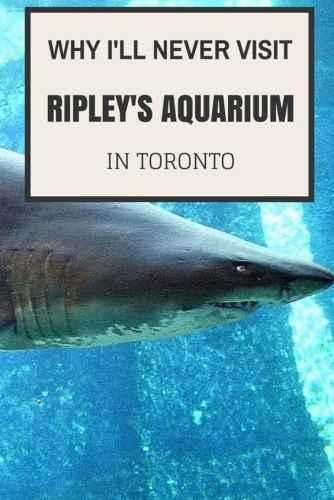 Why I'll Never Visit Ripley's Aquarium in Toronto