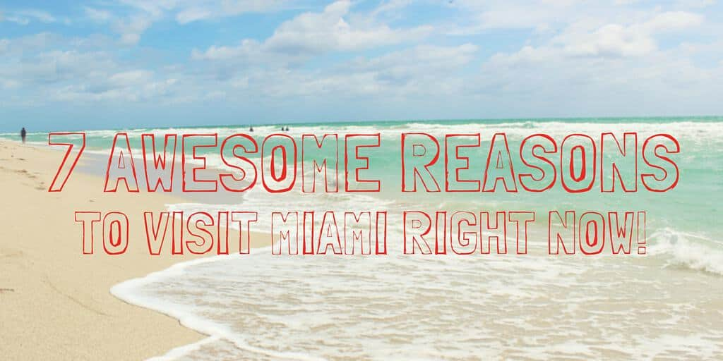 7 Awesome Reasons to Visit Miami Right Now