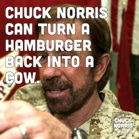 chuck cow
