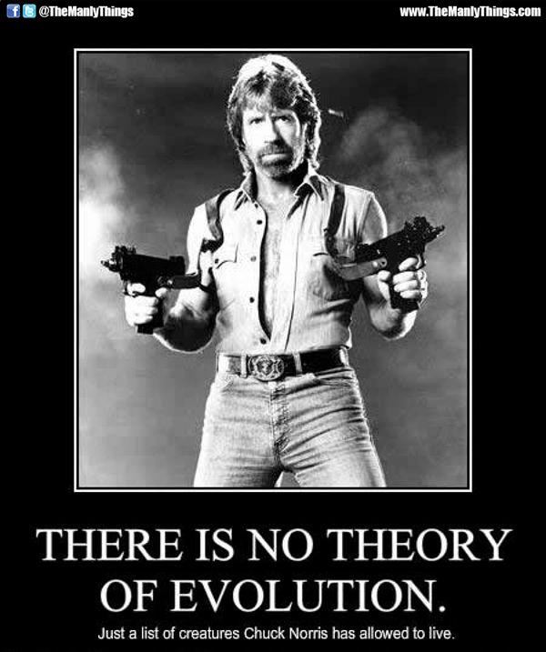 Chuck Norris meme: