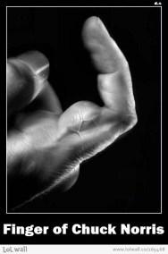 norris finger