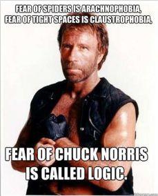 norris logic