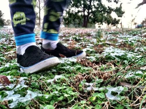 NC Snow shoes 2013