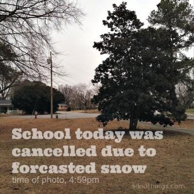 Snow day shmoe day.