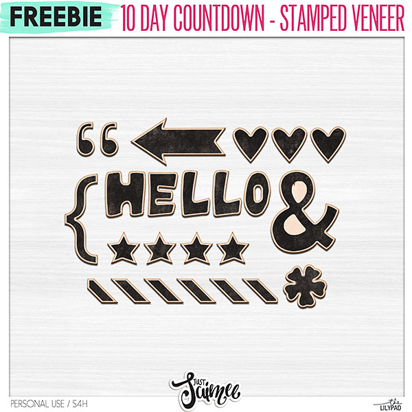 jj-countdown-day8-Stamped Veneer