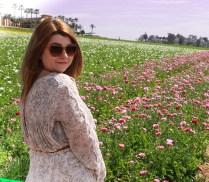 Flower fields17 (1 of 1)