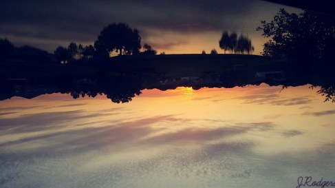 sunsetbyard