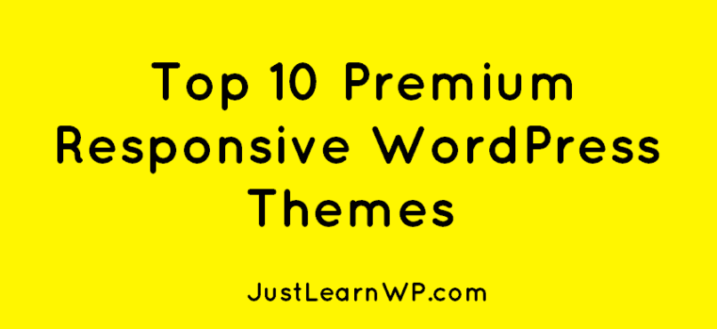 Top 10 Premium Responsive WordPress Themes 2016 2017
