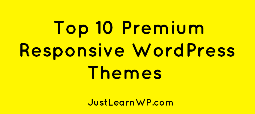Top 10 Premium Responsive WordPress Themes 2016 2017