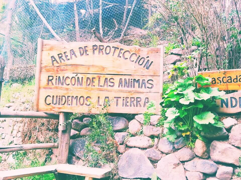 Area of Protection Sign in the Forest