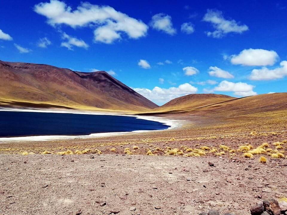 Altiplanic Lagoons   Visit Atacama Desert: The Perfect 4 Day San Pedro de Atacama Itinerary