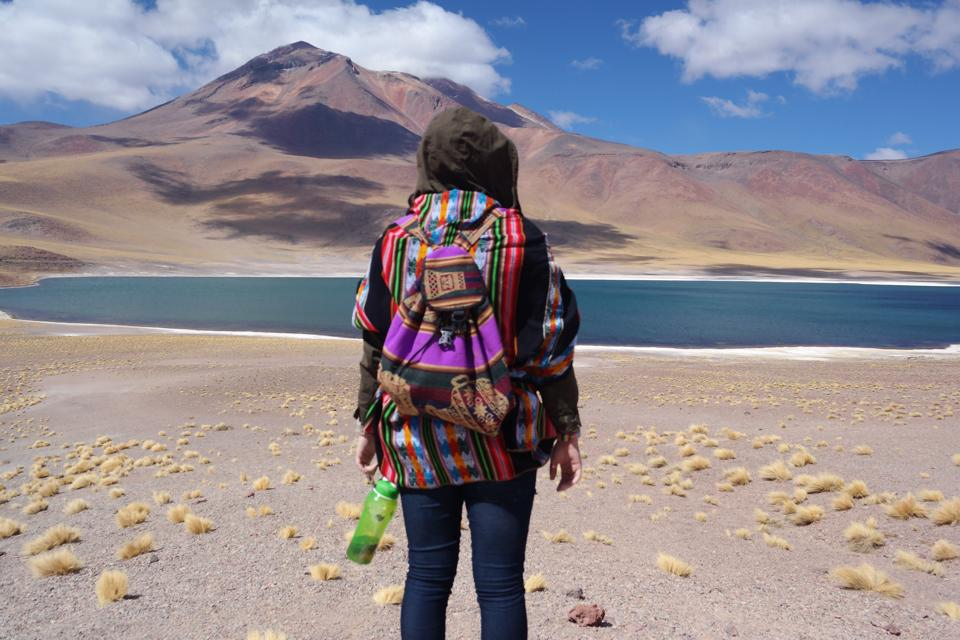 Four Days in the Atacama Desert: Atacama Lakes