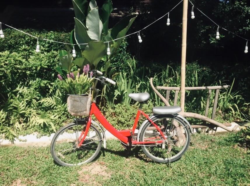 Red Bike in Chiang Mai garden