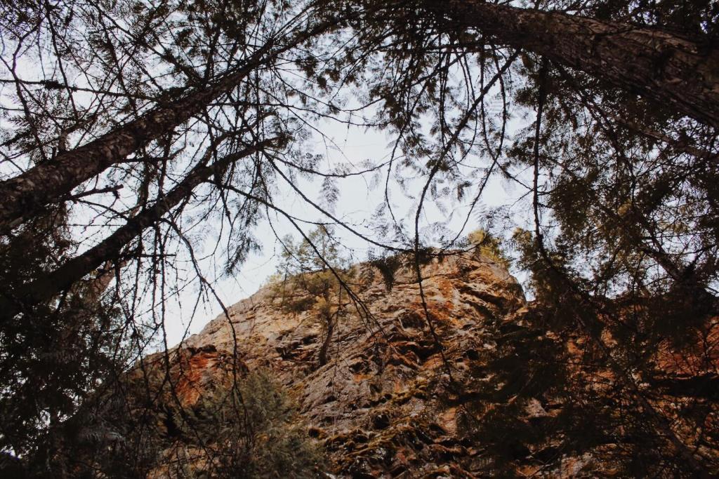 Underrated Hike in Kelowna. Scenic Canyon Regional Park