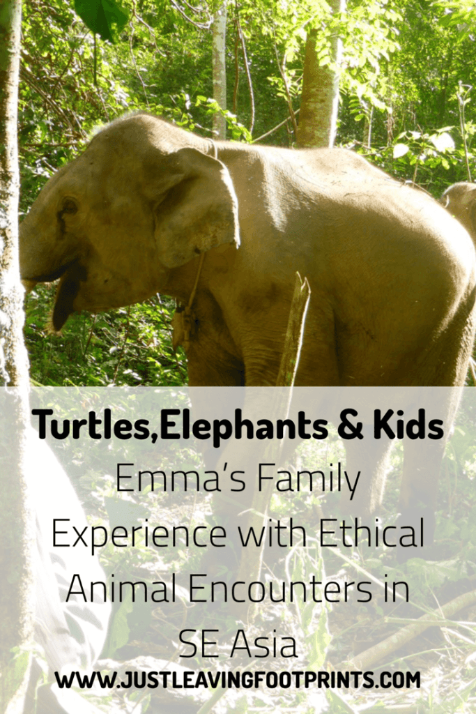 Emma´s Family Experience with Ethical Animal Encounters in SE Asia