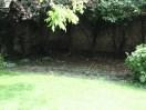 garden26may (2)